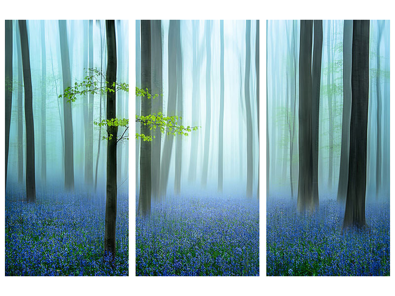 3 Piece Canvas Print The Blue Forest