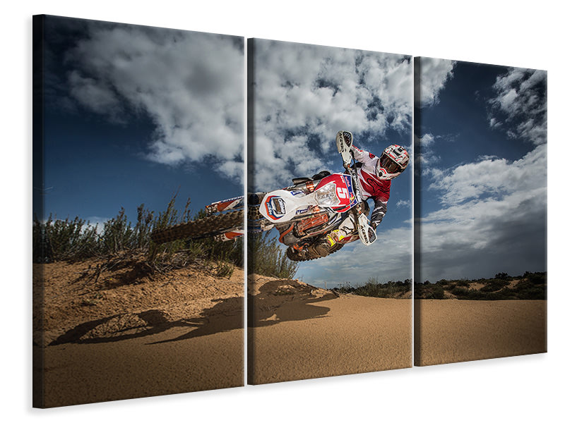 3 Piece Canvas Print Knocked Up