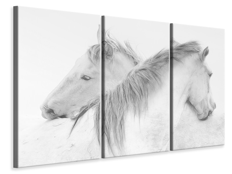 3 Piece Canvas Print Horses