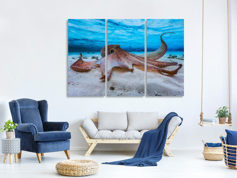 3 Piece Canvas Print Octopus