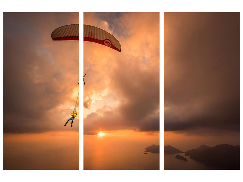 3 Piece Canvas Print Suspended With Ferdi Toy and Guillaume Galvani