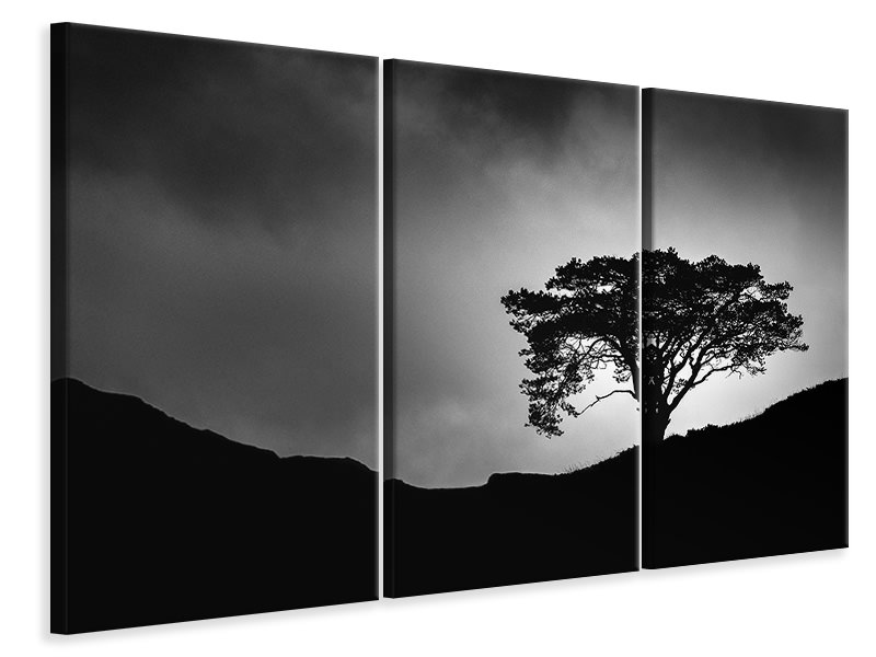 3 Piece Canvas Print Lone Tree