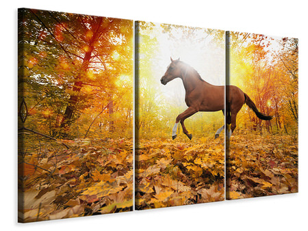 3 Piece Canvas Print Whole Blood In Autumn Forest