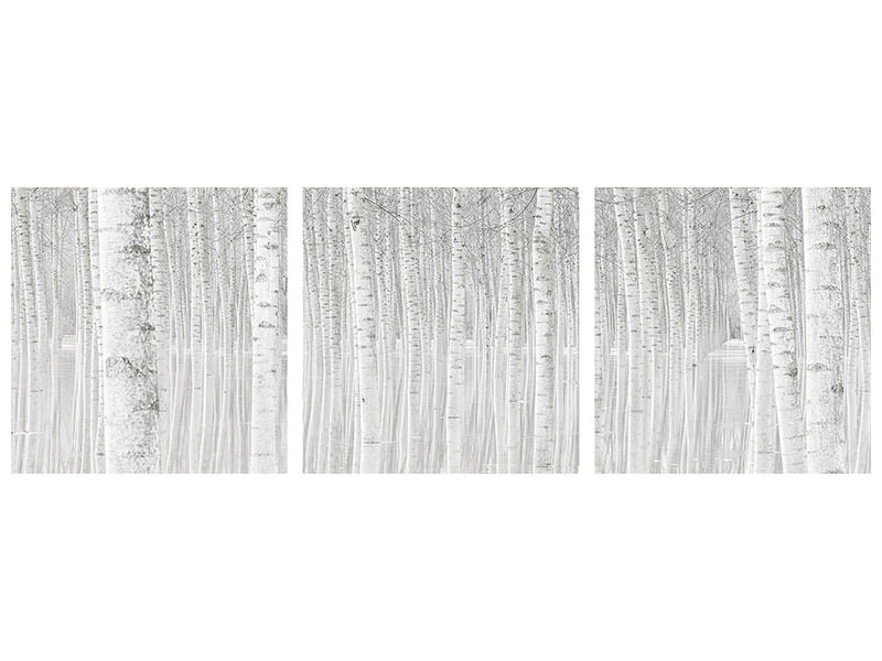Panoramic 3 Piece Canvas Print Trees