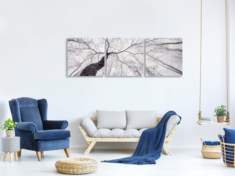 Panoramic 3 Piece Canvas Print A View Of The Tree Crown