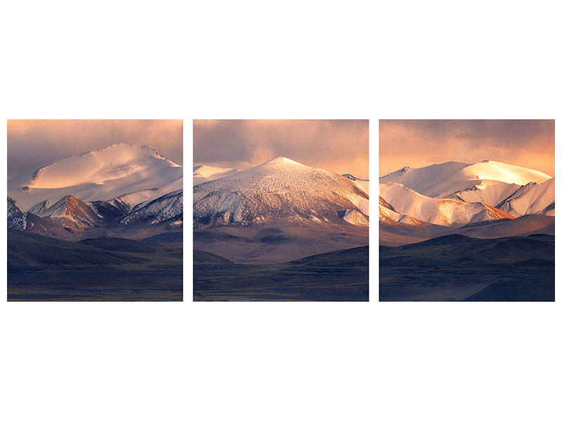 Panoramic 3 Piece Canvas Print Cappuccino