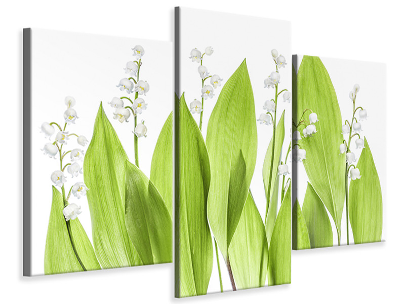 Leinwandbild 3-teilig modern Lily Of The Valley