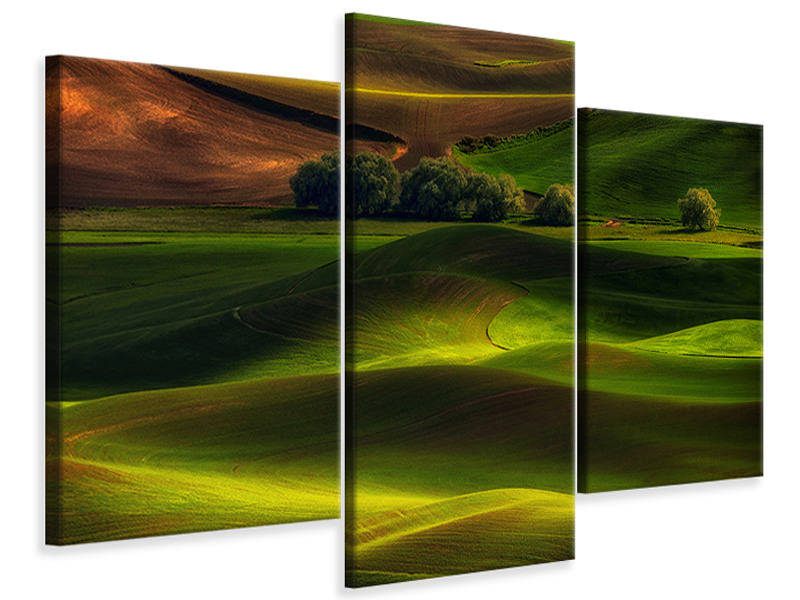 Stampa su tela 3 pezzi moderno Spring In The Palouse
