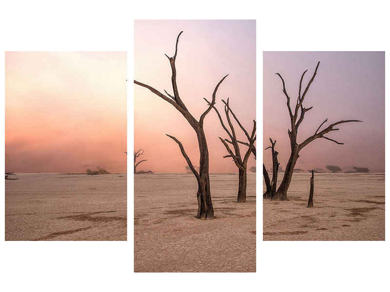 Modern 3 Piece Canvas Print Fog In Deadvlei