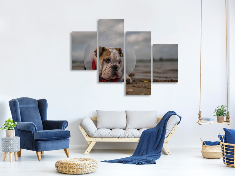 Tableau sur Toile en 4 parties moderne The Vet Gave Me This CollarAnd I Am Not Happy With It
