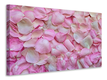 Canvas print Rose petals in pink 2