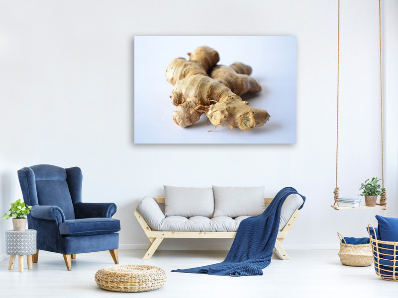 Canvas print Fresh ginger tuber