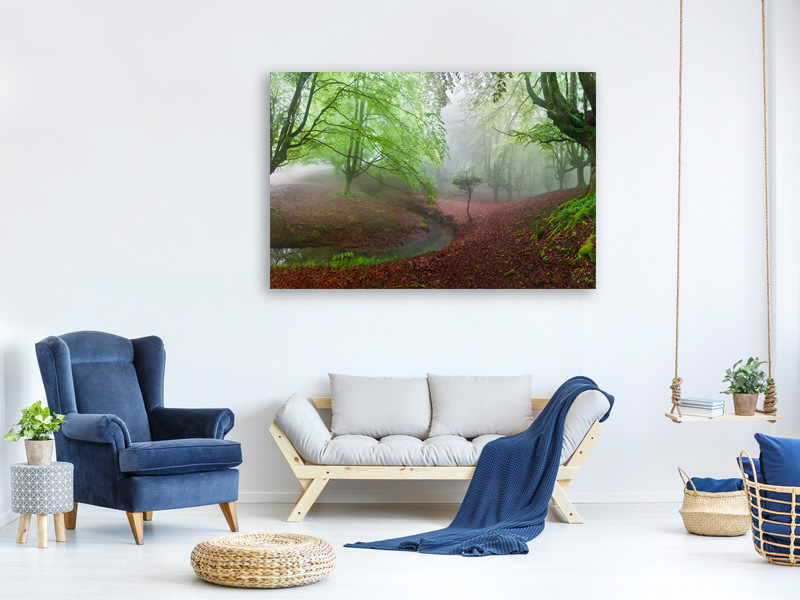 Canvas print The Forest Maravillador Iii