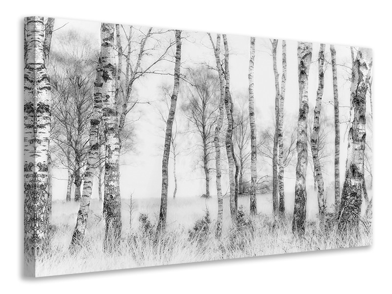Tableau sur toile Black And White