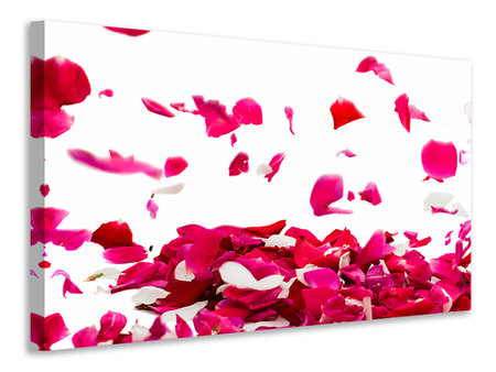 Canvas print Let It Rain Red Roses For Me