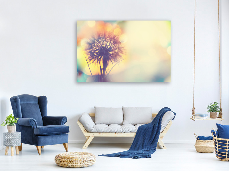 Canvas print The Dandelion In The Light