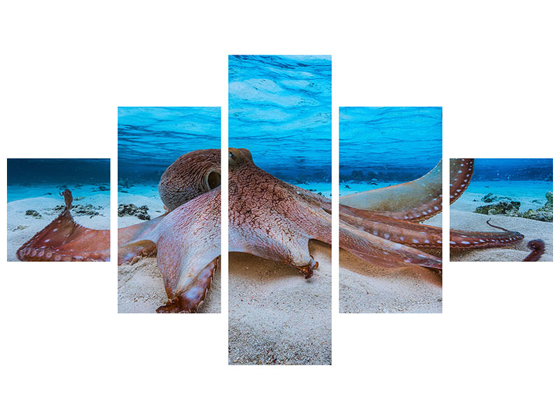 5 Piece Canvas Print Octopus