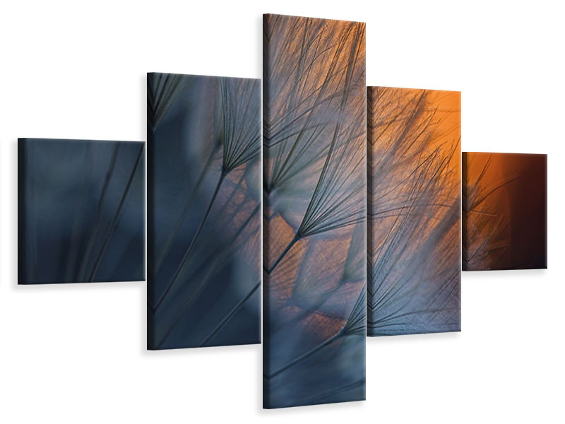 5 Piece Canvas Print Feathers