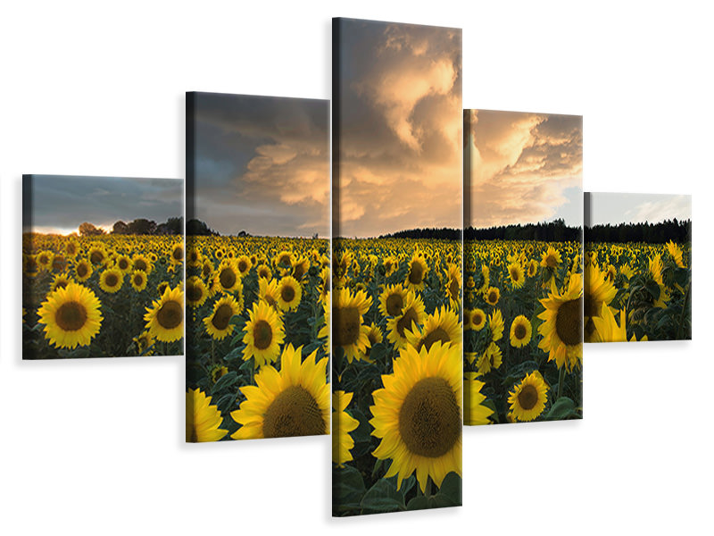 Stampa su tela 5 pezzi Sunflowers In Sweden